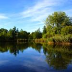 Teich an der Ruhr
